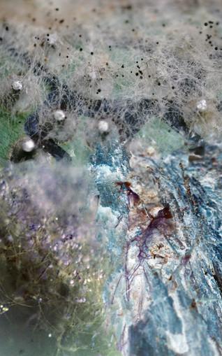 Amalgamated Fragmentations / Invasion 10