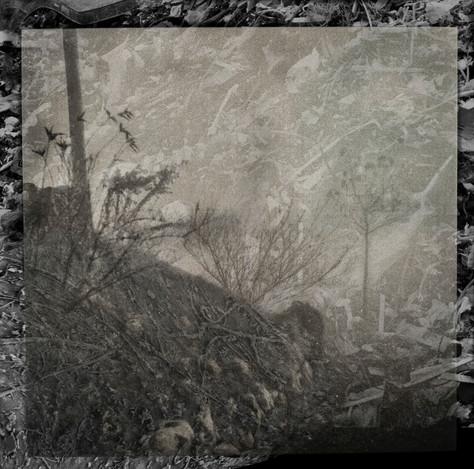Amalgamated Fragmentation/Plastisphere-Earth 8