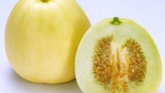 Japanese New Melon (4 pack)