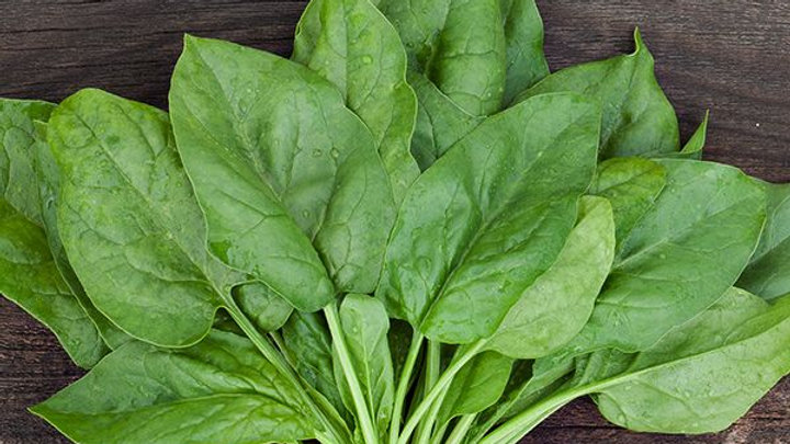Spinach - Verdil (6 pack)