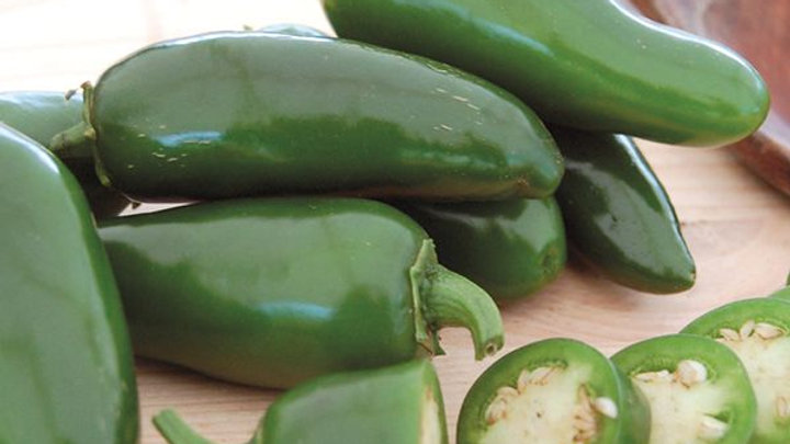 Early Jalapeno Hot Pepper