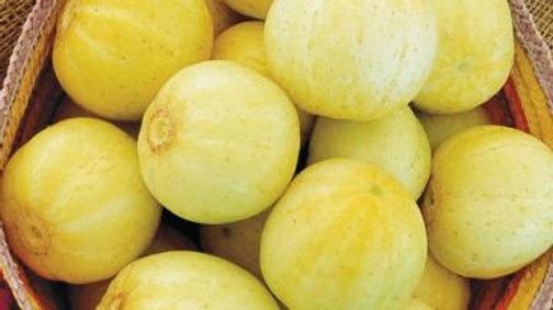 Lemon Cucumber (4 pack)