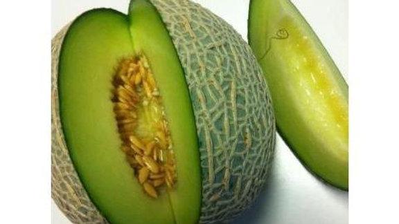 Ichiba Kouji Hybrid Melon (4 pack)