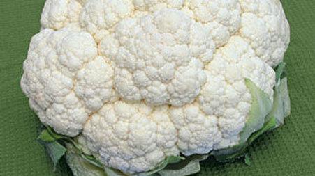 Cauliflower - Snowball Y (6 pack)