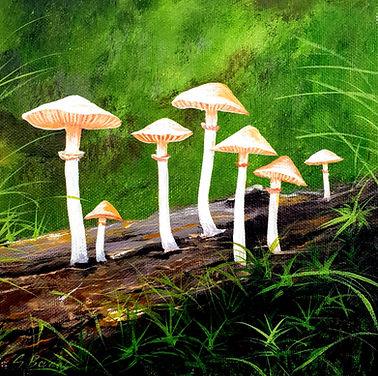 mushroom 6.jpg
