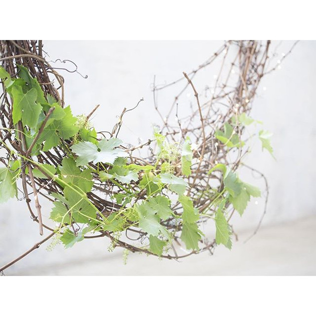 Meet Gertie, our big and beautiful grapevine wreath - picked from the vines of _onedayestate. She is a beauty (1.jpg