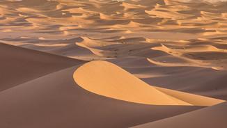 Sahara border dune