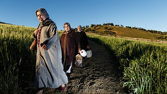Women come down from the hills of Fez to reach the souks of the medina