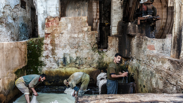Men wash their skins to Chouara tannery
