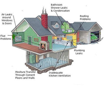 mold inspection and testing south dakota