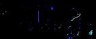 Paisley-Logo2 copy.png