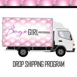 drop shipping copy.png