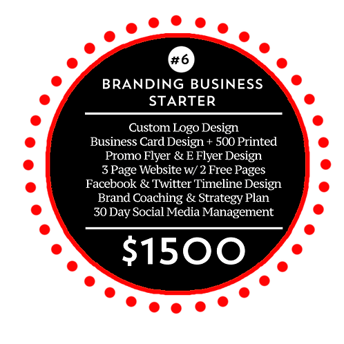 Business Branding Starter Package 6 by iZiggy Promotions