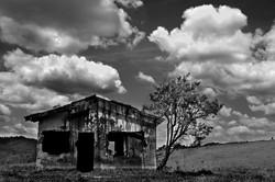 Landscape (23)