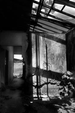 Landscape (25)