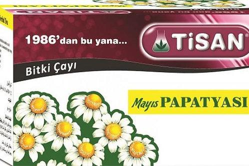 MAYIS PAPATYASI