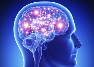 Interesting Facts About the Human Memory