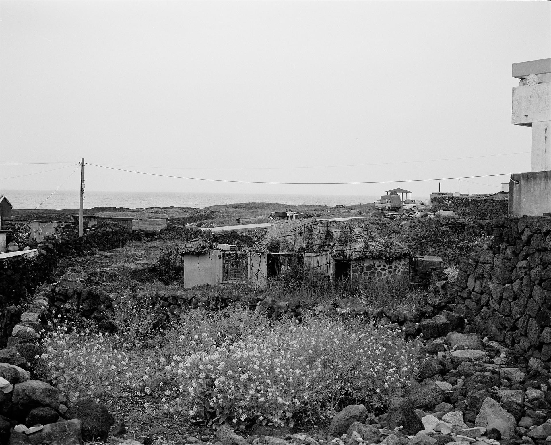 115-1.jpg