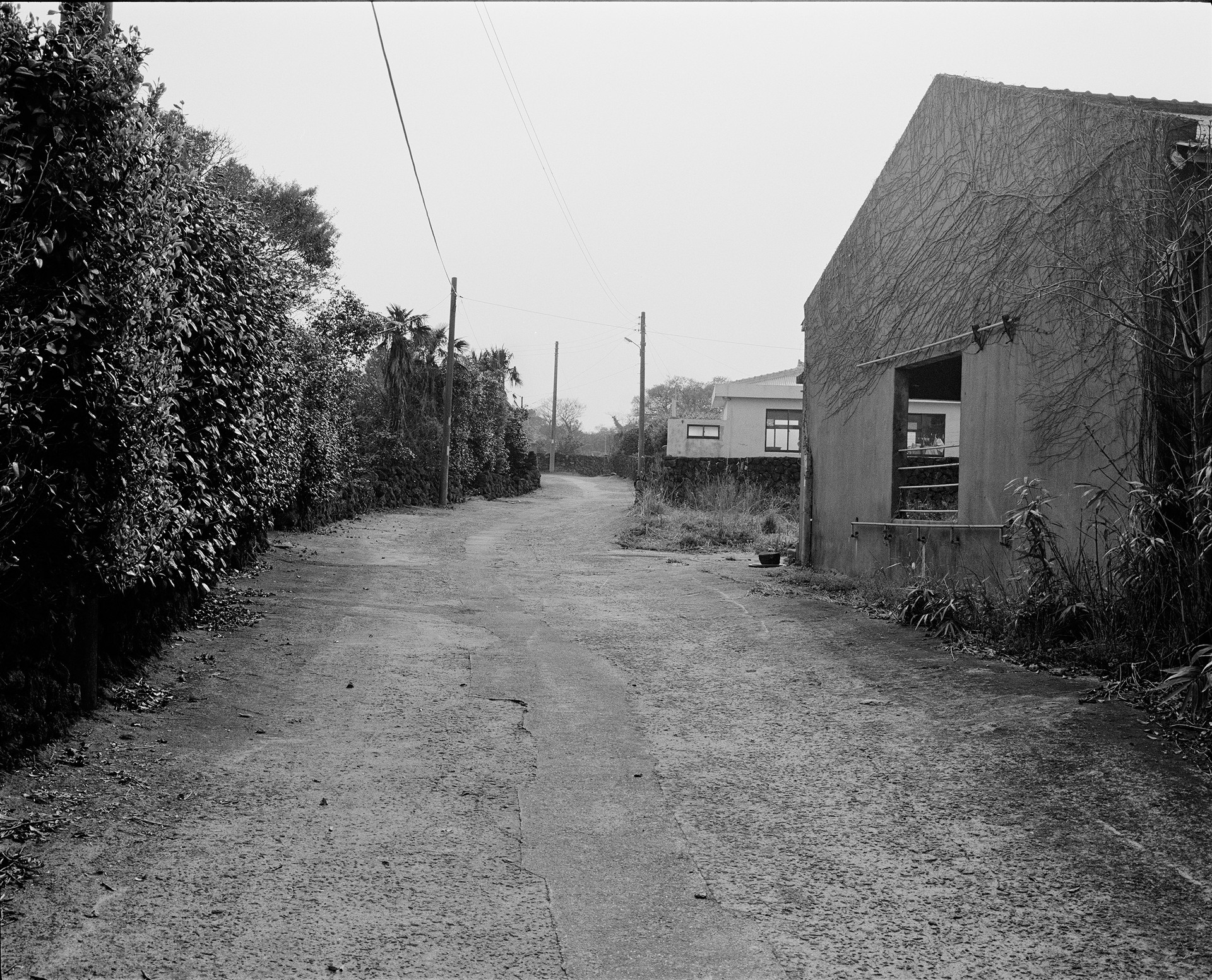 118-2.jpg