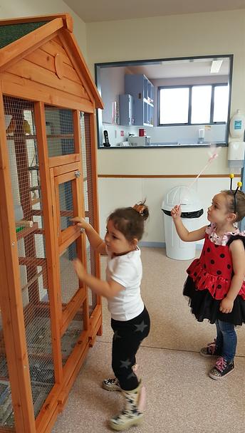 Children at Farmyard Preschool
