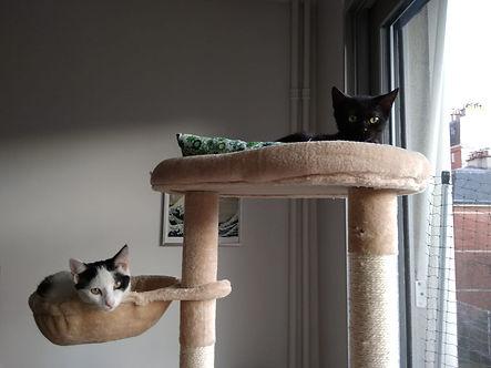 Romy et Casper.jpg