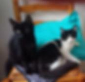 Lara et Livia.jpg