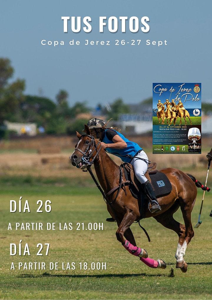 Amarillo_con_Escala_de_Grises_Collage_Pr