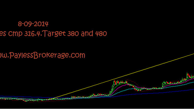 LIBERTY SHOES. CMP 316. Target 380 and 480