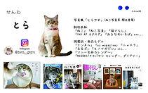 わわ名刺とら元データ_edited.jpg