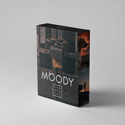 MOODY - LIGHTROOM PRESETS