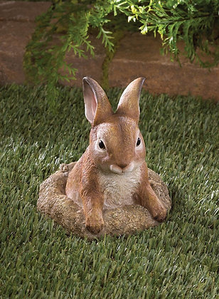 Curious Bunny Garden Decor