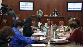 Exposiciones finales por la ley de emergencia provincial en violencia de género