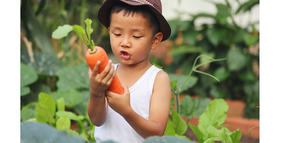 AEIOU: An Integrated Approach to Pediatric Feeding Hybrid Live Online Course