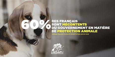 60___des_Français_sont_mécontents_du_gou