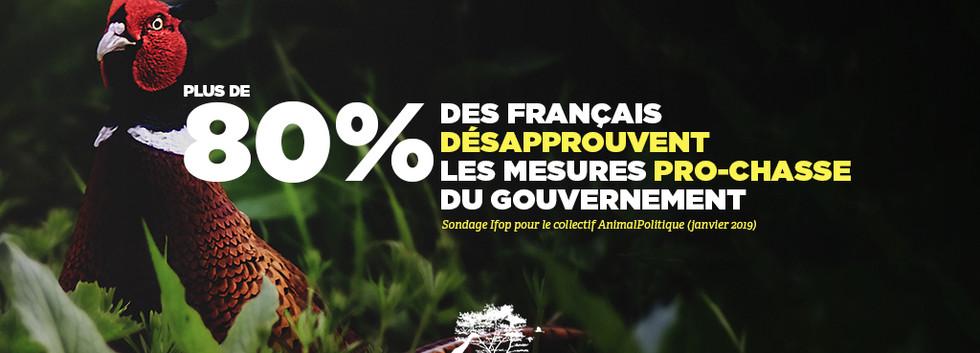 Plus_de_80___des_Français_désapprouvent_