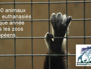 Manifeste AnimalPolitique: proposition 26/30