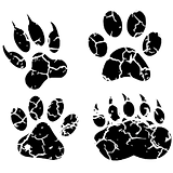 projects-learningenv-footprints.png