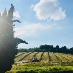 Farm country