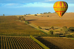 EX395_balloon-adventures-barossa-valley.