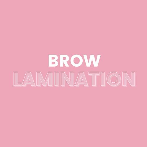 Brow Lamination Training Weston-Super-Mare