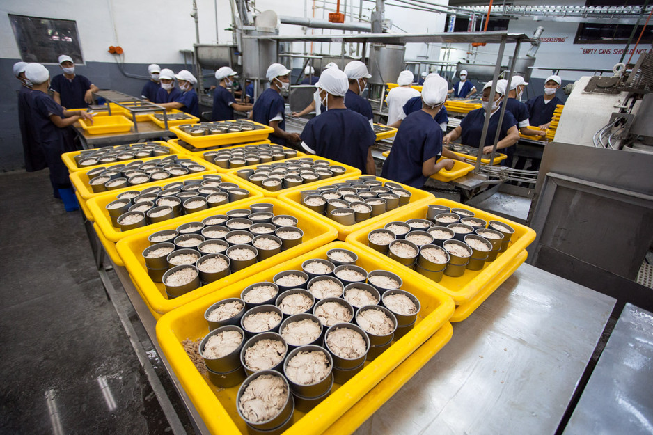 THE GROWTH OF CANNED TUNA