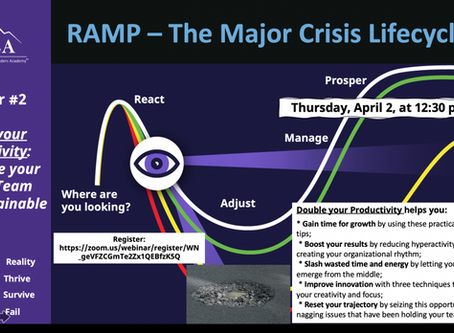 The Major Crisis Lifecycle™