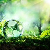 100% ökologisch
