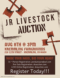 Copy of Silent Auction Fundraiser Flyer