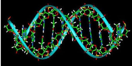 DNA 2.jpg