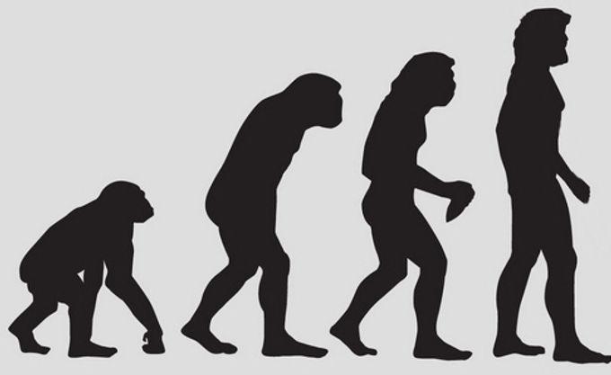 Monkey to man.jpg