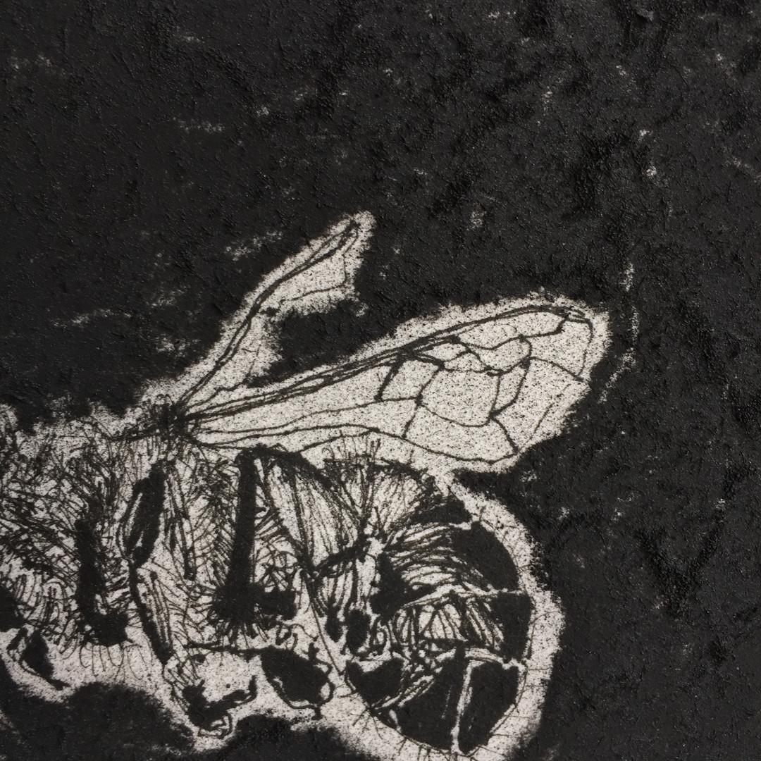 Mirla Fernandes  50 x 50 cm carvão, grafite e marcador sobre papel de algodão 2019