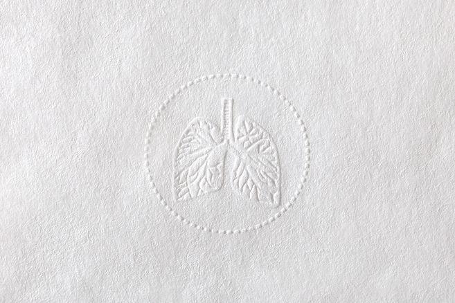 Logo Mirla Fernandes.jpg