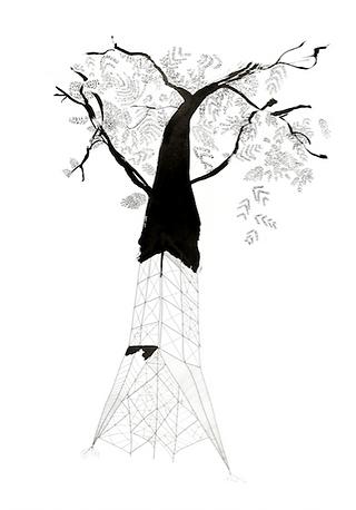 A3 Metamórficas Torre