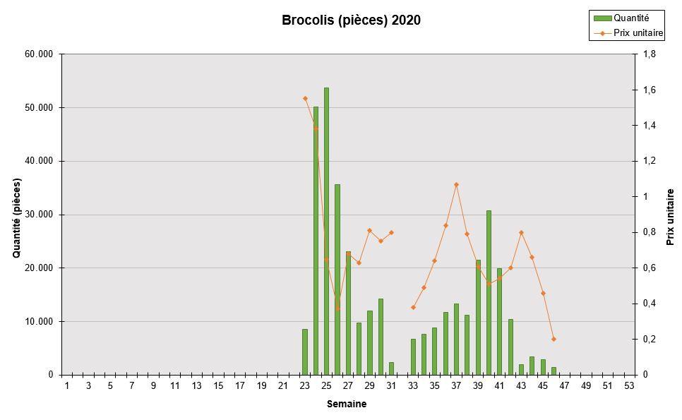 Brocoli 2020